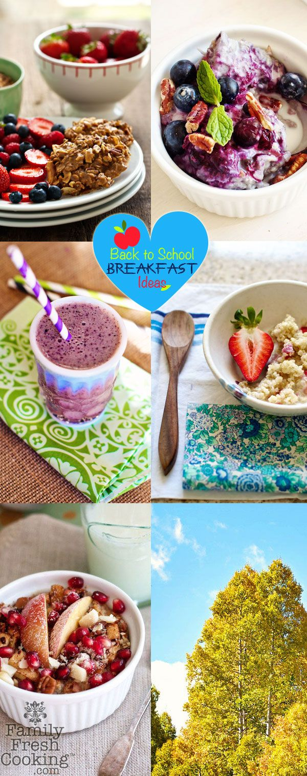 Back to School Breakfast Ideas - New Post from Family Fresh Cooking