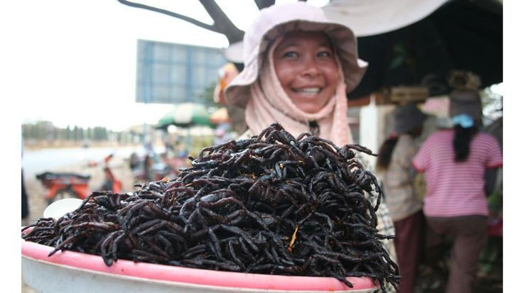 Eat Fried Tarantulas in Cambodia Fried spiders for sale at the market in Skuon, Cambodia.