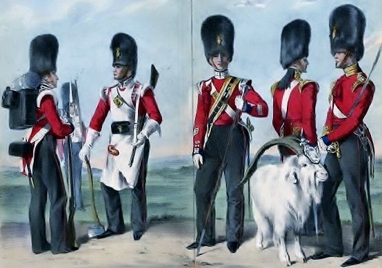 Hand colored plate from the RWF Cannon History of the Drum Major Noble Group.