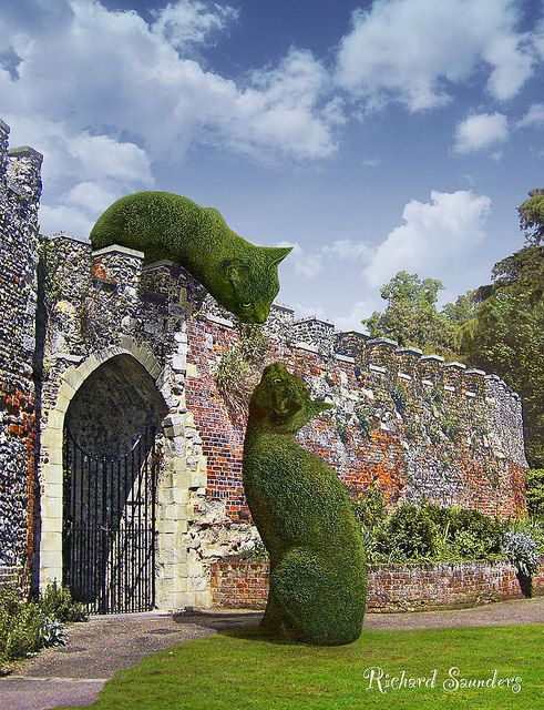 This is real, done by John Brooker, a retiree aged 75 who lives in Norfolk, UK. //My Topiary Cat was lonely so I have found him a friend.