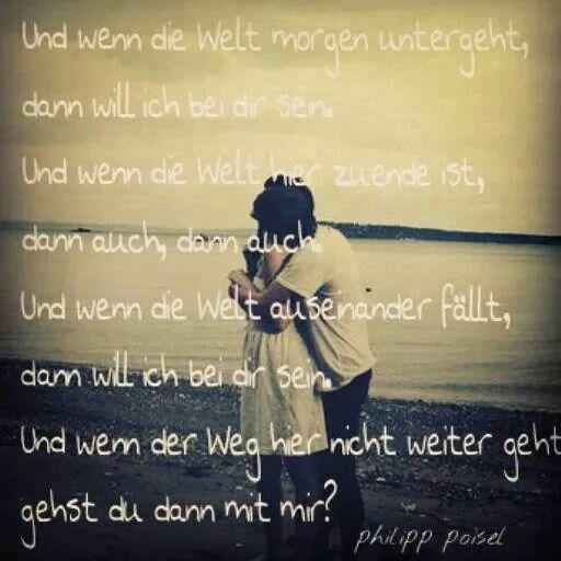 Halt Mich - Philipp Poisel   Shazam