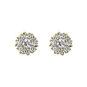 14K Yellow Gold Plated Flower CZ Stud Earrings with Screw-back for Children & Women GoldenMine. $12.00. Complete with complimentary Gift Box for Gift Giving. Stud Earrings are the perfect addition to your wardrobe for any occasion. Brilliantly Crafted using only the finest 14K gold available.. This item qualifies for FREE-SHIPPING with purchase of over $30.00. Manufactured using only up-to-date manufacturing techniques ensuring excellent quality and value.. Save 71% Off!