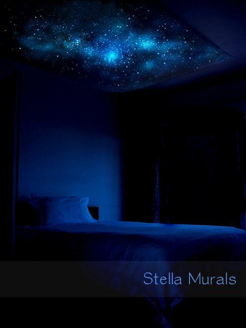 Scorpius Resplandor en el dosel de tela oscura por StellaMurals