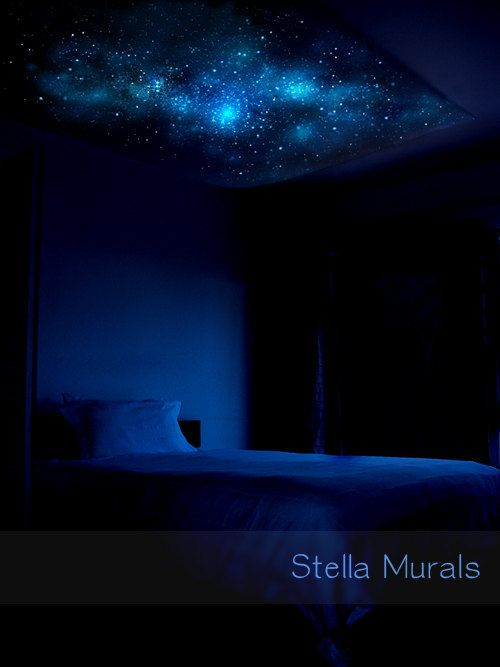 Glow in the Dark Star Ceiling Canopy GLOW 5'3 x by StellaMurals