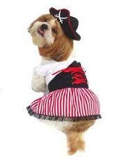 Pirate Costume Female