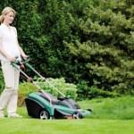 Bosch Garten Rotak 43 Elektro- Rasenmäher Bildes 3