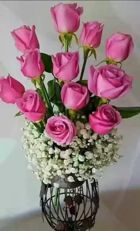 Pin by Dewi Pratiwi on Rose Flowers | Pinterest | Rose flowers and ...