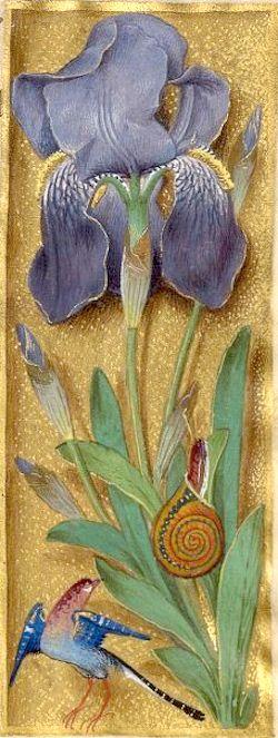 Iris (f°90r) -- Livre d'heures, en latin et en français, à l'usage de Cambray («Livre d'heures d'Isabelle de Lalaing»), vers 1478 [BNF, Arsenal Ms 1185 réserve].