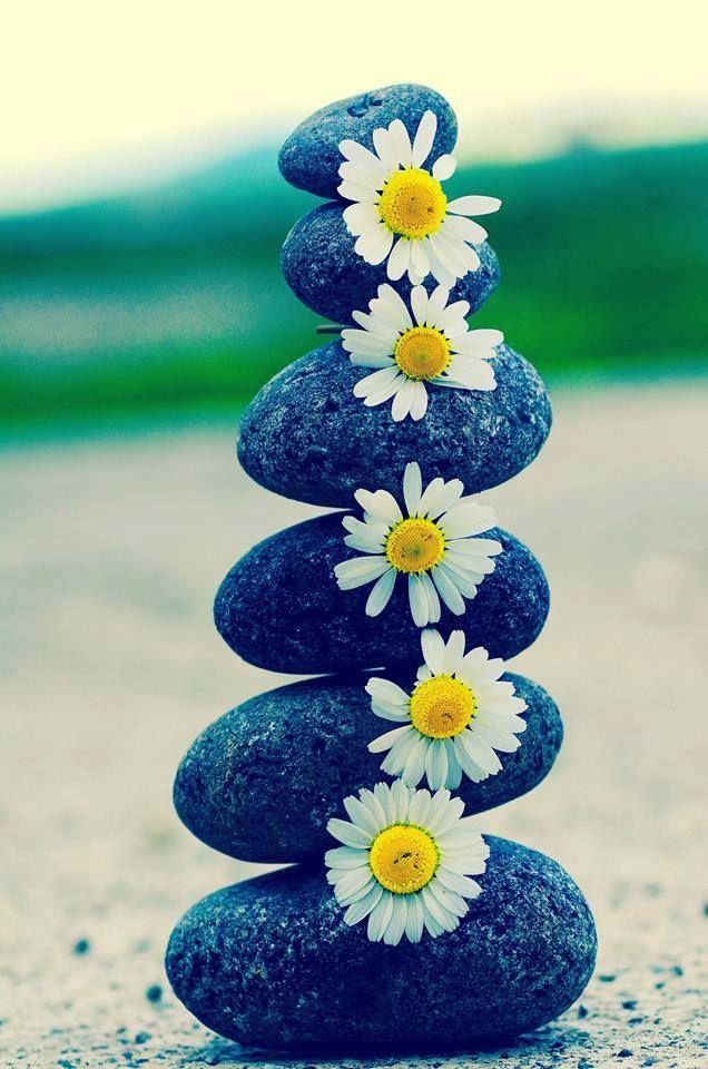 #tudodebom #flores #inspira