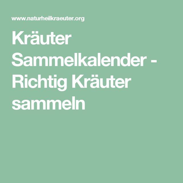 Kräuter Sammelkalender - Richtig Kräuter sammeln