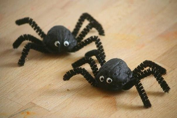 spin maken van notenhelft