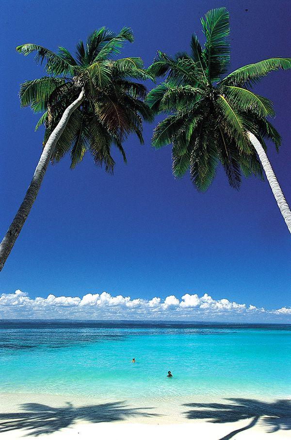 Tekisikö mielesi sinne missä palmut kasvaa?