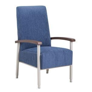 Linea Adjustable Armchair