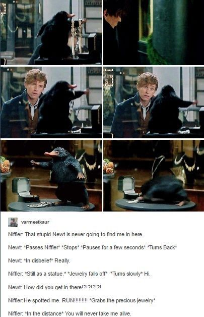 Harry Potter Book Monologues : One of the best parts fantastic beasts and where to