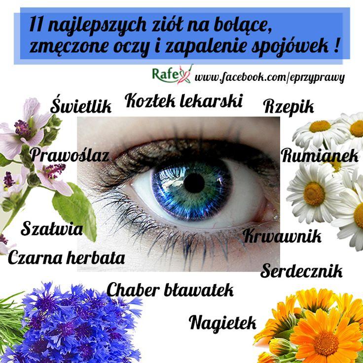 11 najlepszych ziół na bolące i zmęczone oczy