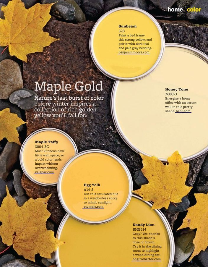 Maple Gold Paint Colors From Better Homes Amp Gardens 328