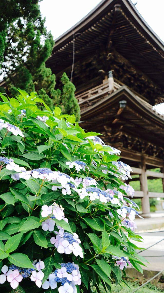 北鎌倉 建長寺