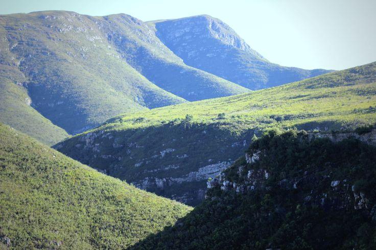 Tradouw Pass, Swellendam. #loveoverberg