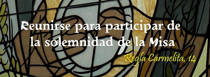 Regla Carmelita, número 14