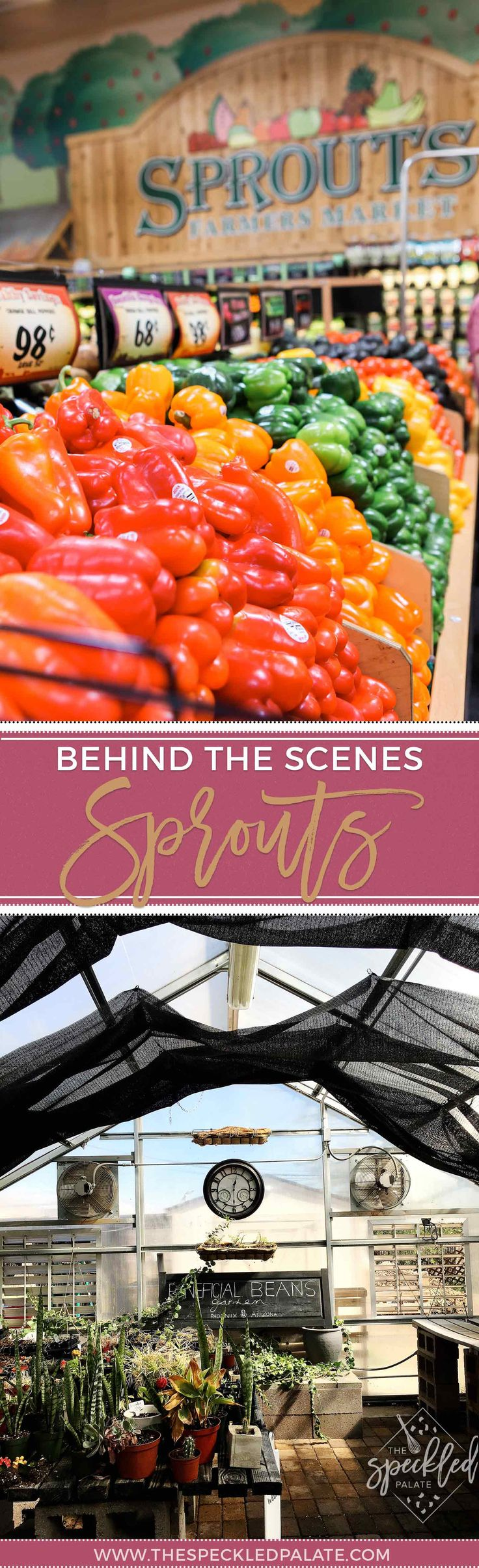 AD | Sprouts Farmers Market | Behind the Scenes | Sprouts Sustainability | Sprouts Recycling | SARRC | Beneficial Beans