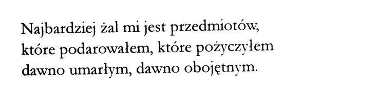 Marcin Świetlicki /