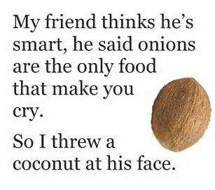 Funny Photos Quotes And Sayings 24.