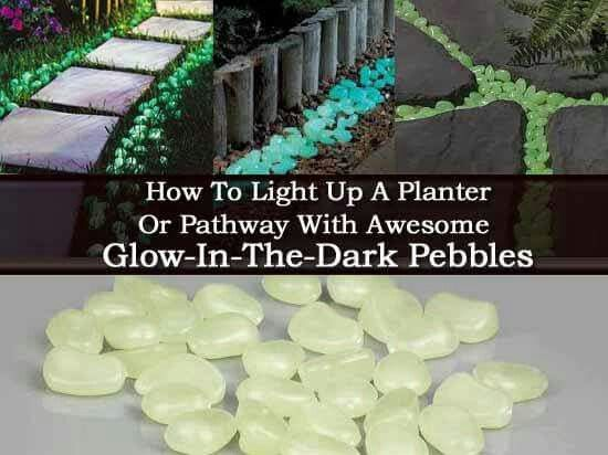 Light up a path with with glow in the dark pebbles