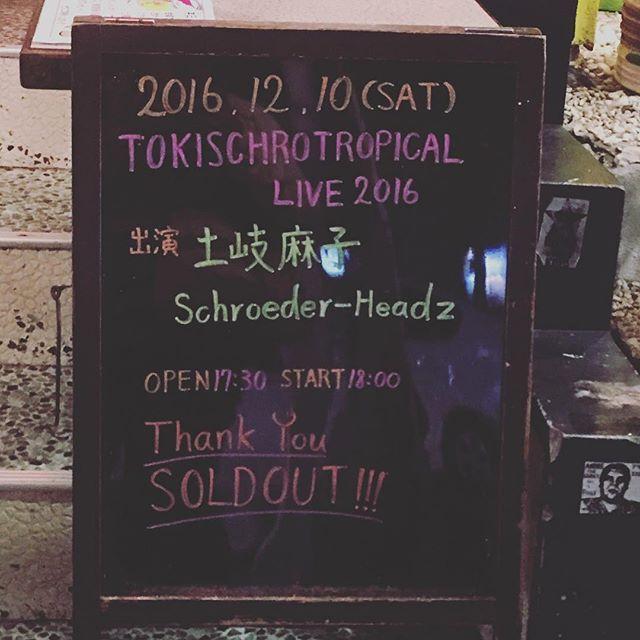 昨晩は土岐麻子さんとSchroeder headz のツーマンライブ (^ν^)生の音楽は楽しかったにゃ。今日は美ら海行けたのかしらね。笑♪(´ε` )。#土岐麻子 #Schroeder headz