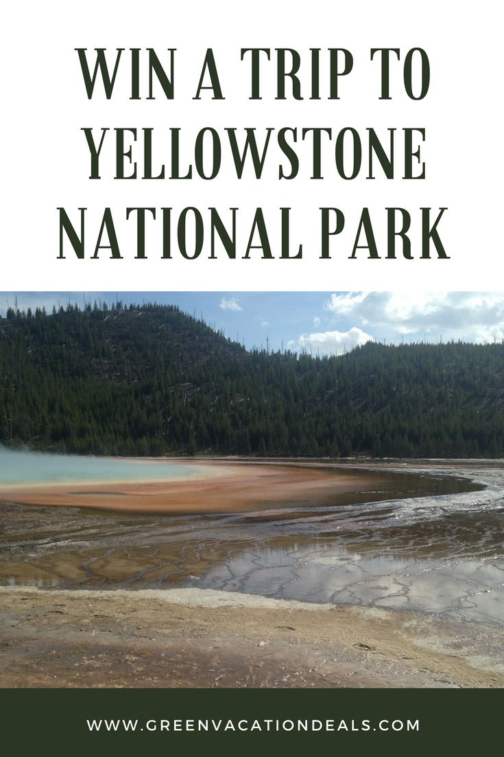 Want to visit Yellowstone National Park? Enter this travel sweepstakes and you could win a trip to Yellowstone! Includes airline credit, 4 night stay, a backcountry hike to Geyser Basin, a wildlife viewing excursion & more. #yellowstone