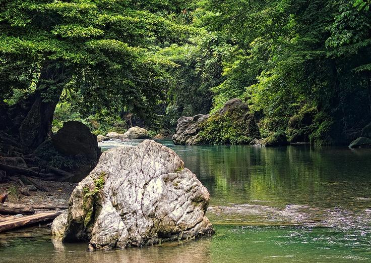Tangkahan River, Gunung Leuser National Park (TNGL), Langkat | North Sumatra - Indonesia