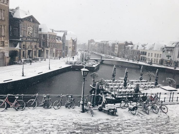 The first snow fell in Leiden today  Winter has officially arrived! What a wonderful sight.. #LeidenUniversity #UniversiteitLeiden #winterwonderworld #snow #white