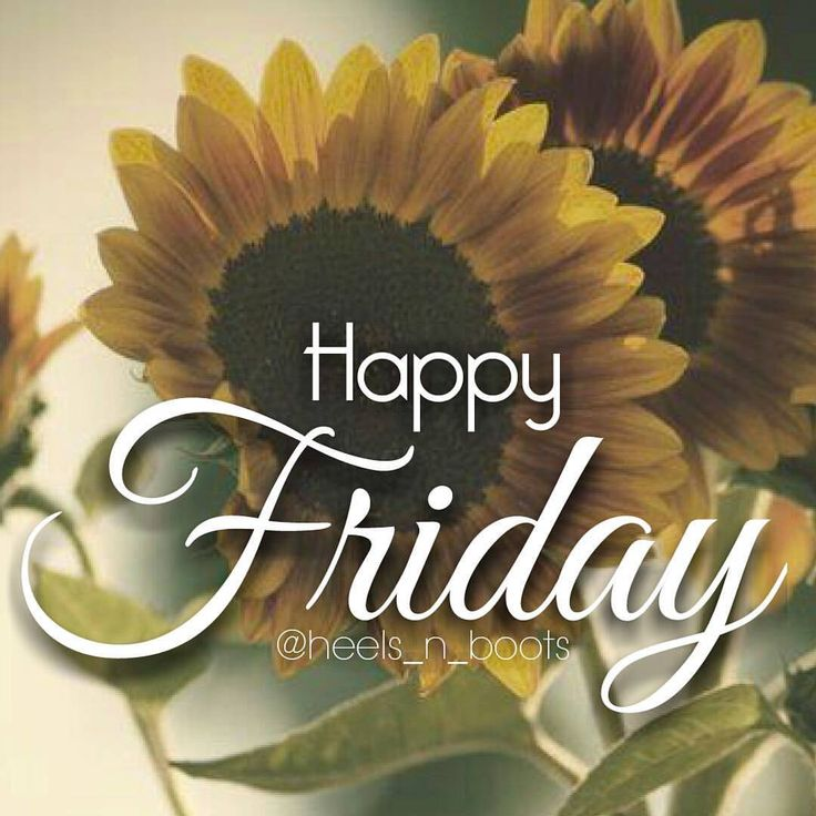 Fantastic Friday Quotes: 394 Best Images About Friday On Pinterest