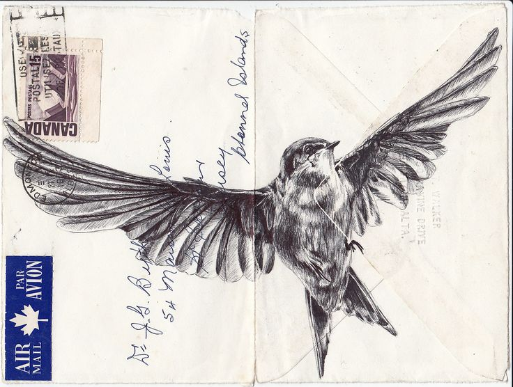 Bic biro drawing on 1973 envelope.