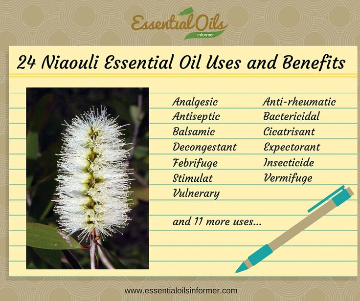 24 Nourishing Niaouli Essential Oil Uses & Benefits You'll Love
