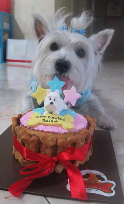 Scottie Dog Cake Decorations : The 157 best images about westie cakes on Pinterest ...