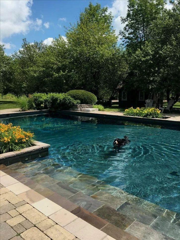 epic private backyard pools - 726×968