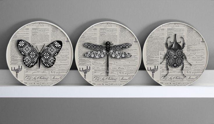 lot de 3 Cadres Papillon libellule scarabée noir & blanc 3d , Décor cabinet de curiosité : Collages par digitalartparis