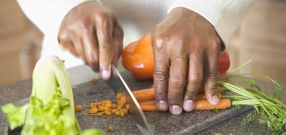 Helsedirektoratet tipser om bloggen min på nytt nettsted om vegetarisk kosthold.