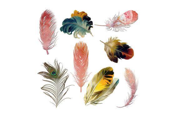 Pluma de plumas Vintage plumas de ave pluma por GolzDigitalDesigns
