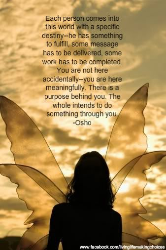 """You are not here accidentally - you are here meaningfully. There is a purpose behind you."" - Osho"