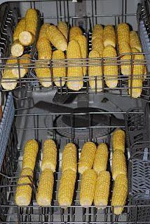 Freezing Fresh Corn on the Cob - using the DISHWASHER!!!