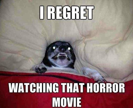 Horror Movie Humor Pinterest Chihuahuas