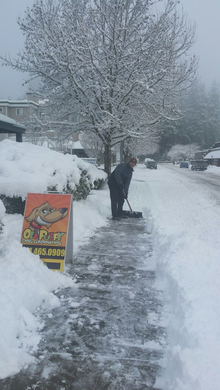 Yes we have snow but we are open for business!