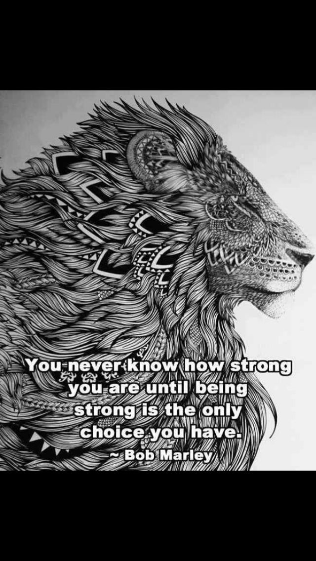 This lion would be so cool as a tattoo.  Also like the qoute