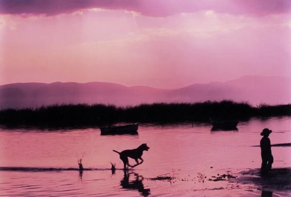 "Photo of the Day: May 15, 2012. ""Boy and dog playing in Chapala Lake""Victor Hugo Casillas Romo (Zapopan, Mexico)  Photographed June 2011, Jocotepec, Jalisco, Mexico"