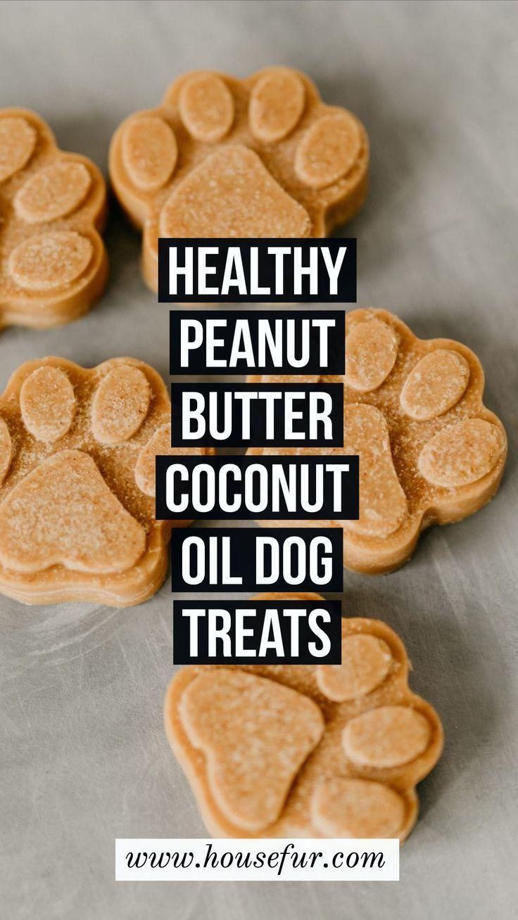 Gesunde selbst gemachte Erdnussbutter-Kokosnussöl-Hundefestlichkeiten