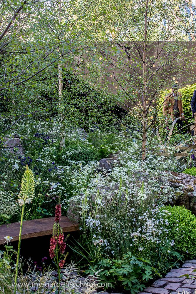 #Chelsea Flower Show 2014 Harry & David Rich, Rich Landscapes, Vital Earth The Night Sky #Garden
