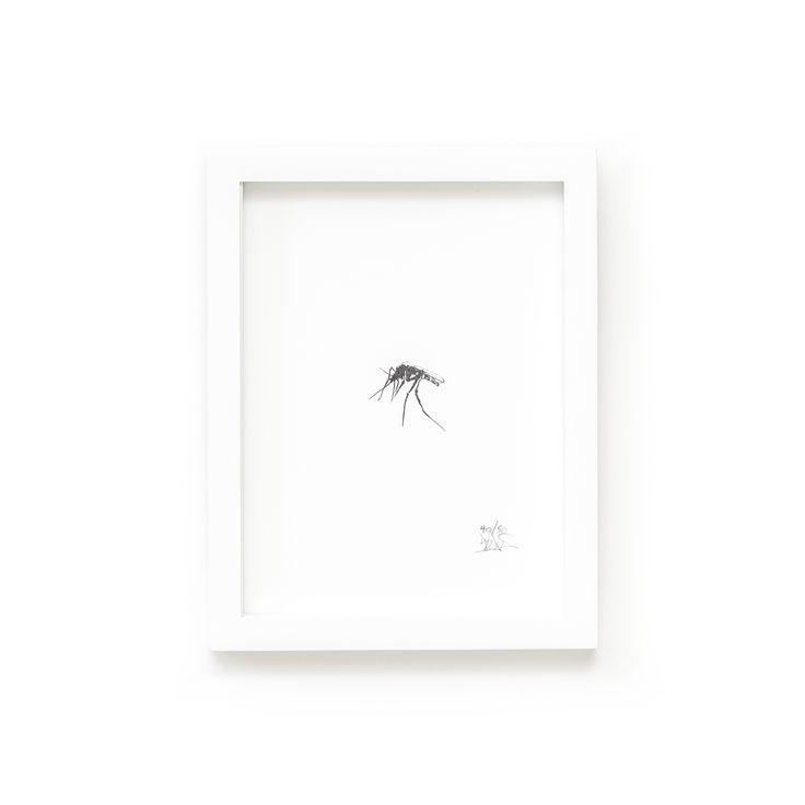 Mosquito Fine Art Print on Paper Teemu Järvi Illustrations http://www.teemujarvi.com/en/shop/paper-prints/57-mosquito.html