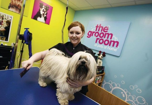Pets at Home posts sales rise as loyalty scheme draws customers | News | Retail Week