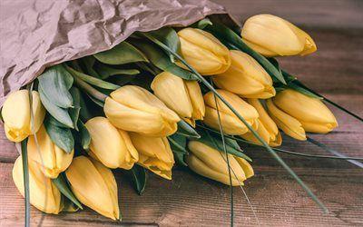 Tulipani gialli, bouquet di tulipani, primavera, fiori, tulipani